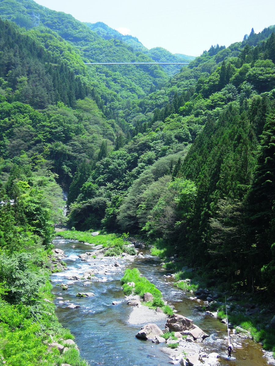 http://www.uenomura.ne.jp/blog/photonews2/DSCN7201-002.JPG