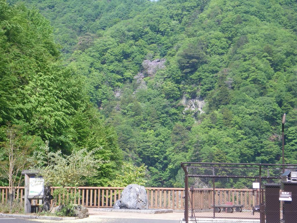 http://www.uenomura.ne.jp/blog/photonews2/IMGP2346-2.JPG