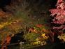 上野村出会い橋の紅葉ライトアップ
