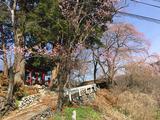 川和地区_諏訪神社